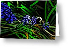 Untitled 7-02-09 Greeting Card