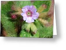 Untitled Floral -1 Greeting Card