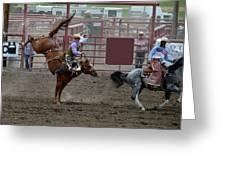 Bronco Rider Seven Greeting Card