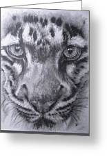 Up Close Clouded Leopard Greeting Card