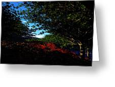 Up Hill Greeting Card