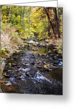 Up The River Gg  5671 Greeting Card