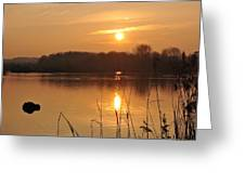 Upon Golden Ponds Greeting Card