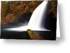 Upper Butte Creek Falls Greeting Card