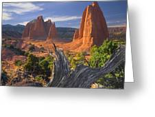 212645-upper Cathedral Valley  Greeting Card
