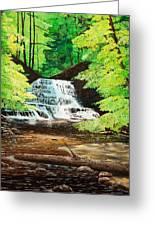 Upper Falls At Salt Springs Greeting Card