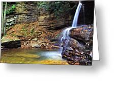 Upper Falls Holly River Greeting Card