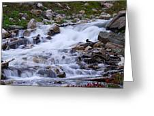 Upper French Creek 2 Greeting Card