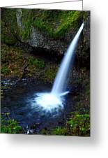 Upper Horsetail - Pony Tail Falls Greeting Card