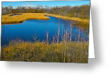 Upper Roxborough Reservoir Greeting Card