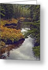 Upper Salamander Creek Greeting Card