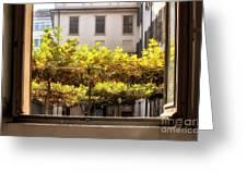 Urban Bower. Milan, Italy. Greeting Card