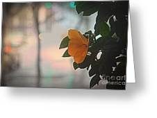 Urban Flora Greeting Card