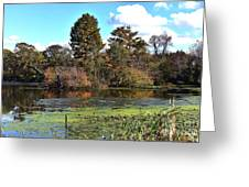 Urieville Pond Greeting Card