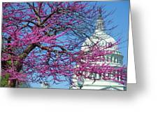 Us Capitol Greeting Card