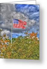 Us Flag 8091 Greeting Card