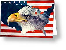 Usa Flag Eagle Greeting Card