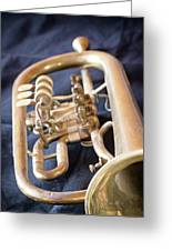 Used Old Trumpet. Vertically. Greeting Card