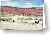Utah 7 Greeting Card