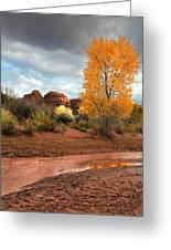 Utah Autumn Greeting Card