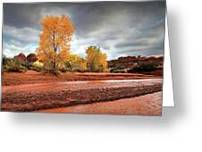 Utah Desert Wash Greeting Card