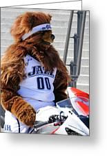 Utah Jazz Bear Greeting Card