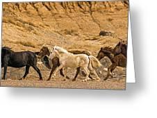 Ute Mountain Wild Horses On The Run Greeting Card