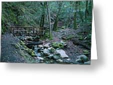 Uvas Canyon Bridge Greeting Card