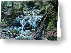 Uvas Canyon Waterfall I Greeting Card