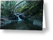 Uvas Canyon Waterfall II Greeting Card