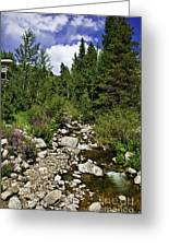 Vail Stream In The Summer 2 Greeting Card