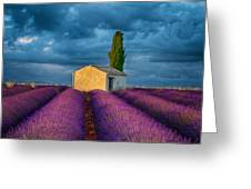 Valensole Shed Greeting Card