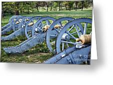 Valley Forge Artillery Park Greeting Card