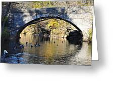 Valley Green Bridge Greeting Card by Bill Cannon