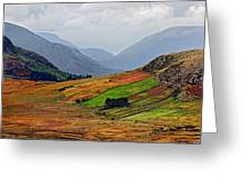 Valley Of Colors Greeting Card