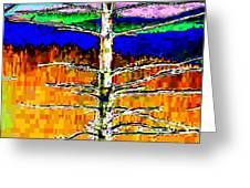 Valley View 1 Greeting Card