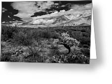 Valley View No.29 Greeting Card