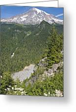 Valley View Of Mt. Rainier Greeting Card