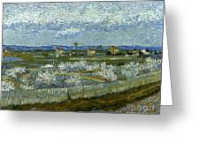 Van Gogh: Peach Tree, 1889 Greeting Card