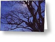 Van Gogh Tree Greeting Card