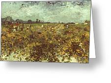 Van Gogh: Vineyard, 1888 Greeting Card