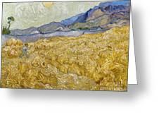 Van Gogh: Wheatfield, 1889 Greeting Card