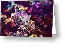 Vanessa Cardui Painted Lady  Greeting Card
