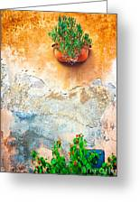 Vase On Decayed Wall Greeting Card