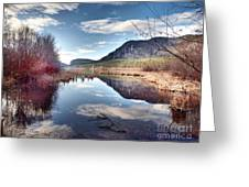 Vaseux Reflections Greeting Card