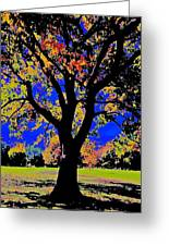Oak Autumn Vasona Greeting Card