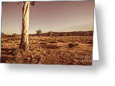 Vast Pastoral Australian Countryside  Greeting Card