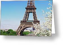 Eiffel Tower And Spring Greeting Card