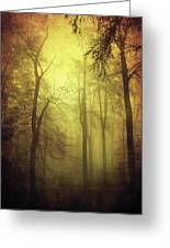 Veiled Trees Greeting Card