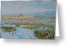 Veldriff Marshes 2011 Greeting Card